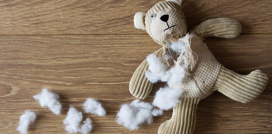 misbehaving teddy